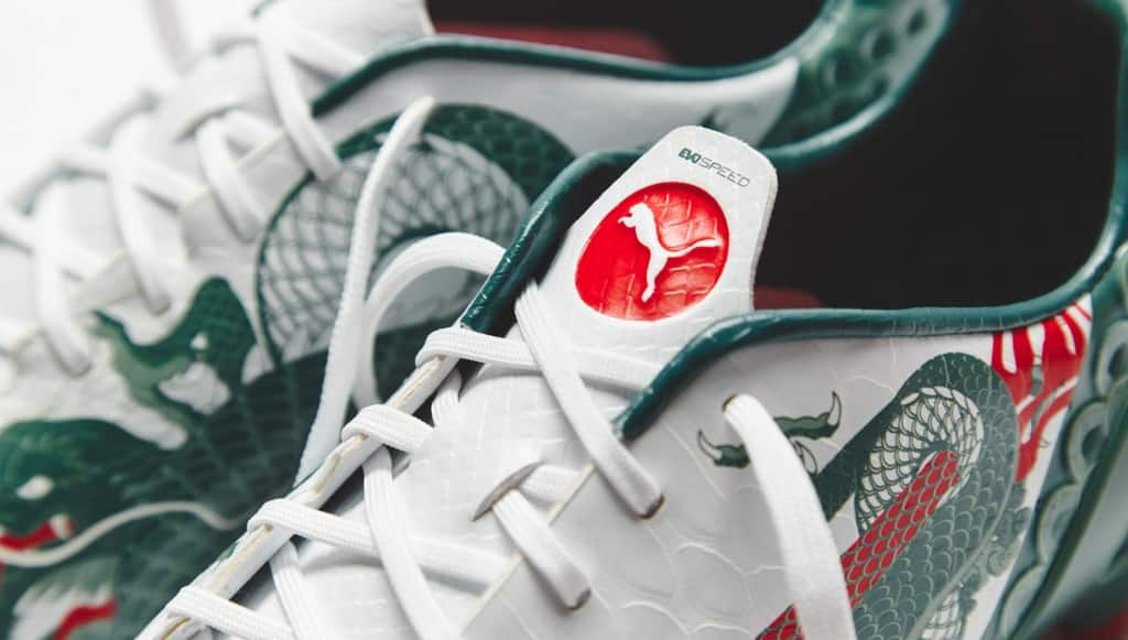 puma-evospeed-13-dragon-4