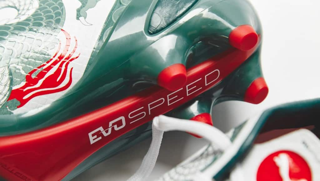 puma-evospeed-13-dragon-7