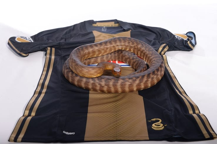 Maillot Philadelphia Union 2016