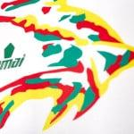 Les maillots de la Coupe d'Afrique des Nations 2017