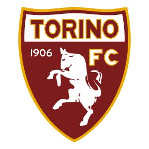 Maillot Torino