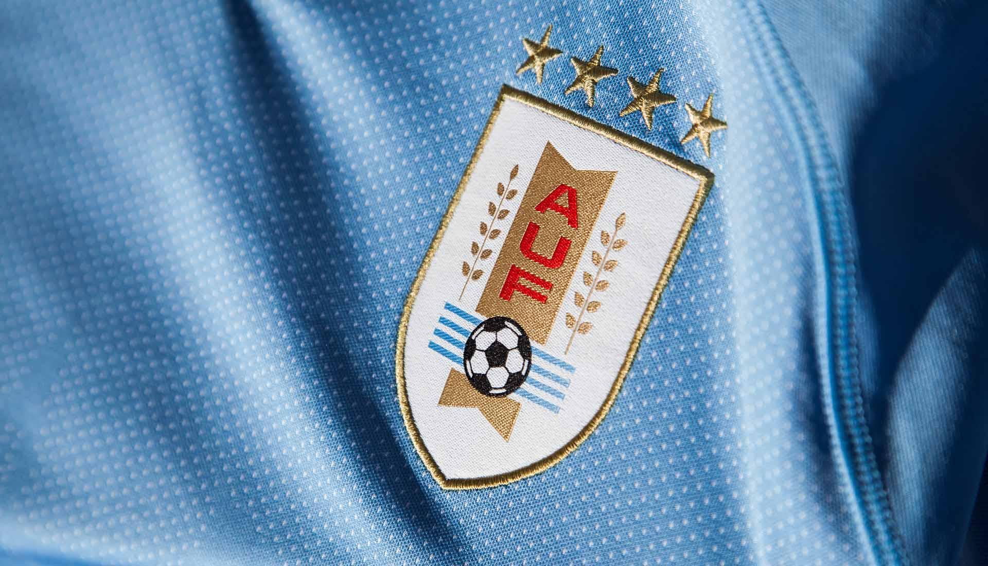 maillot-football-Puma-Uruguay-domicile-2018-img5