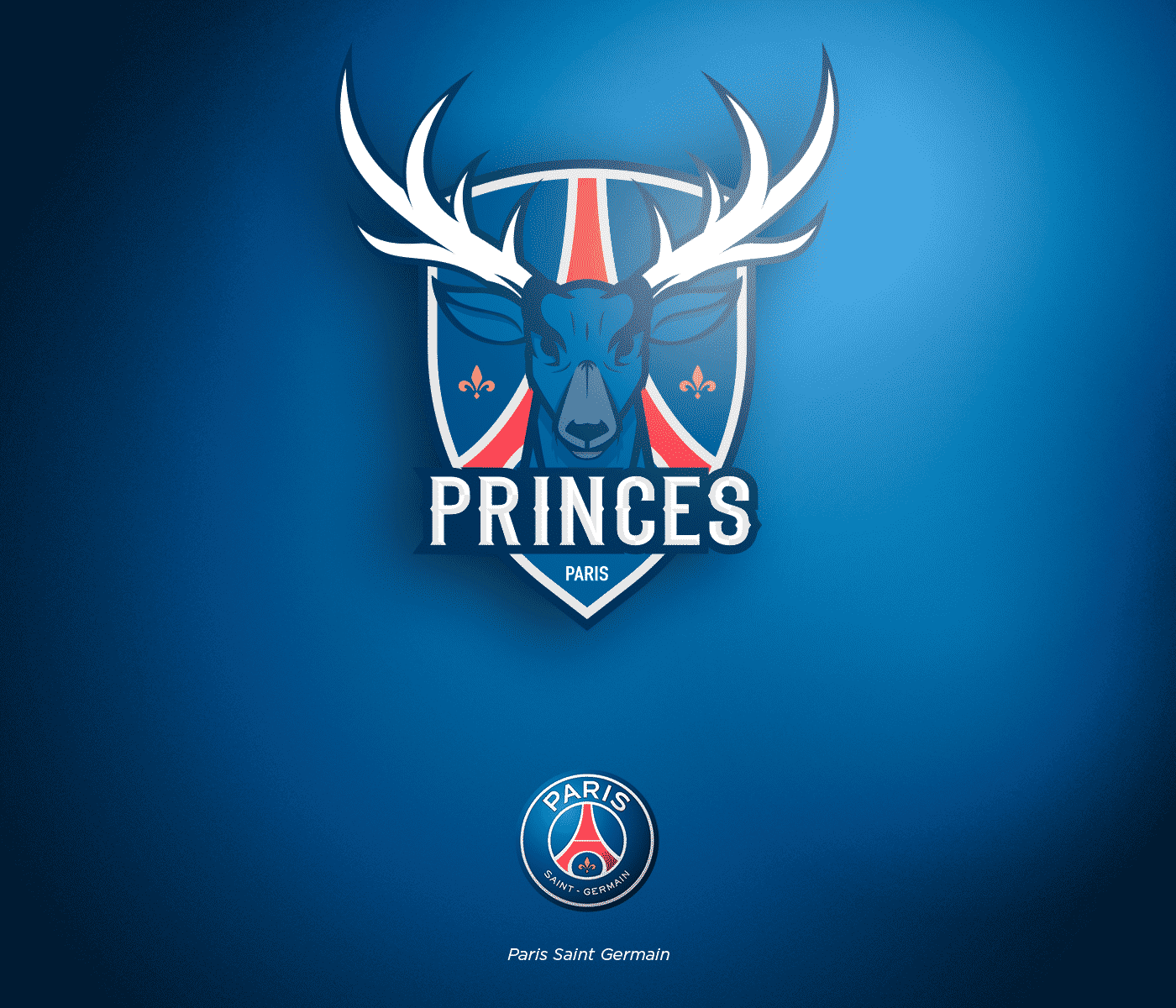 ligue-1-conforama-nba-paris-saint-germain--logo