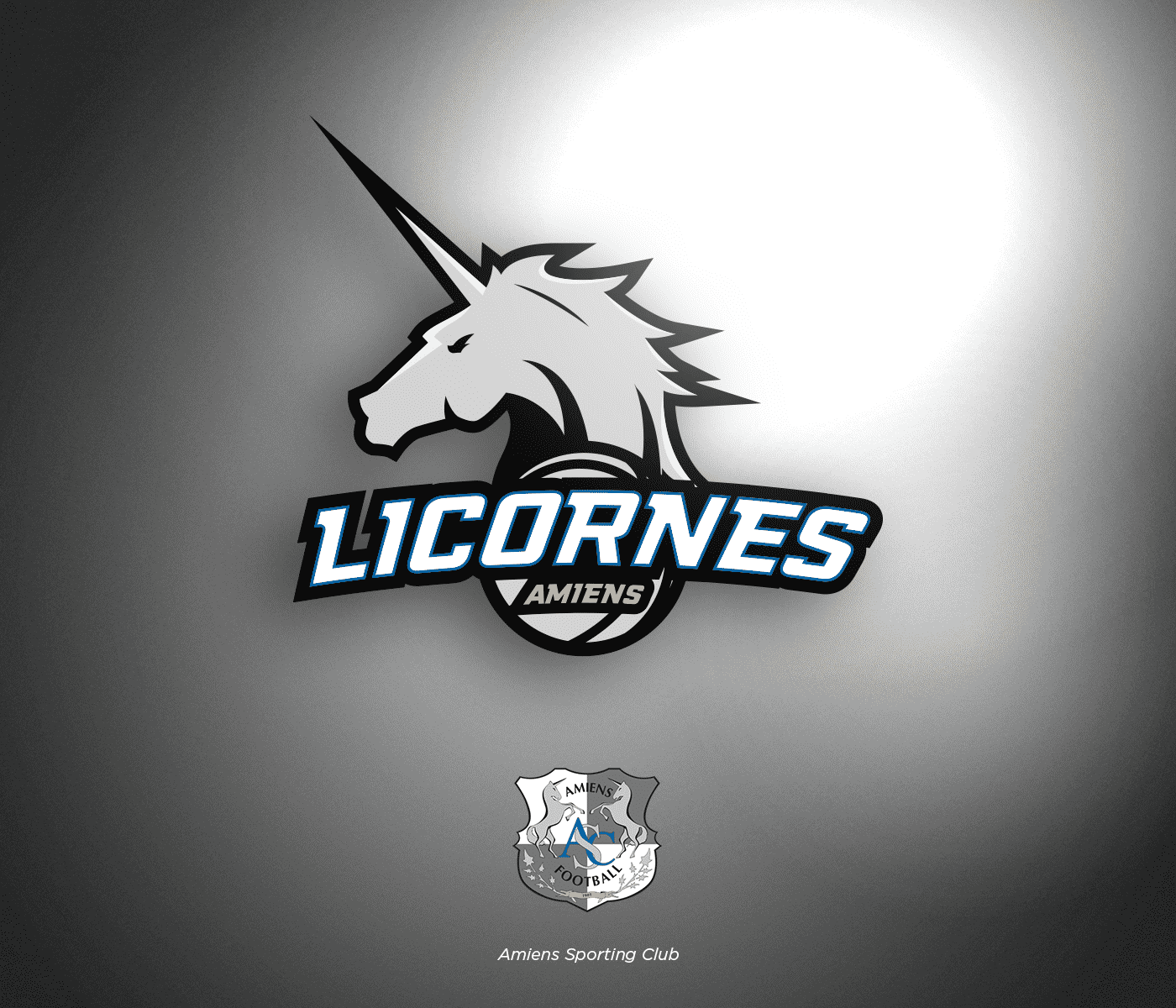 ligue-1-conforama-nba-sc-amiens-logo