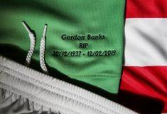Image de l'article Stoke City dévoile un maillot en hommage à Gordon Banks