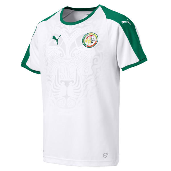 maillot-domicile-senegal-can-2019-puma