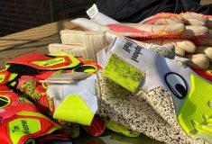Image de l'article Les gants de gardien de la rentrée