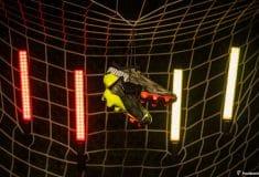 Image de l'article Un nouveau coloris «Game.On.» pour la Puma Ultra