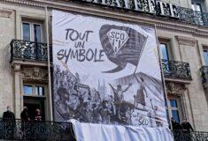 Image de l'article Angers SCO dévoile un nouveau logo !